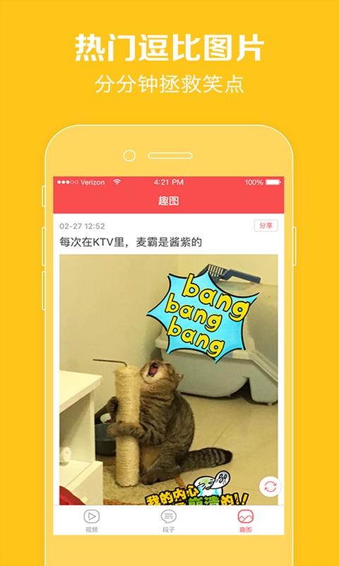 猫咪猫咪_图片2