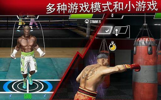 真实拳击2洛奇_图片2
