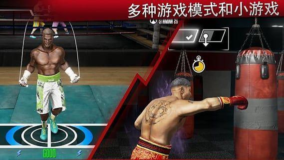 真实拳击2洛奇_图片1